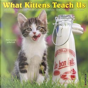What Kittens Teach Us 2019 Calendar by Willow Creek Press