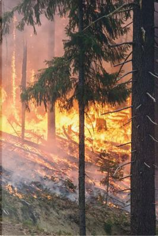 Forest Fire in California Journal by Pen2 Paper