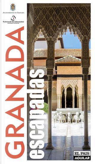 Granada by Paco Nadal