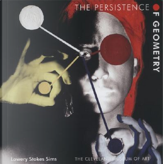 Persistence of Geometry by Lowery Stokes Sims