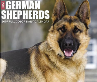 Just German Shepherds 2019 Calendar by Willow Creek Press