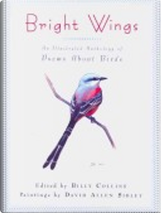 Bright Wings by