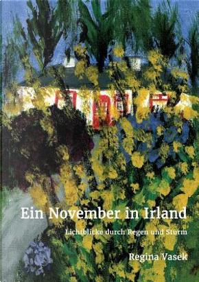 Ein November in Irland by Regina Vasek