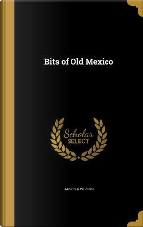 BITS OF OLD MEXICO by James A. Wilson