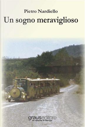 Un sogno meraviglioso by Pietro Nardiello