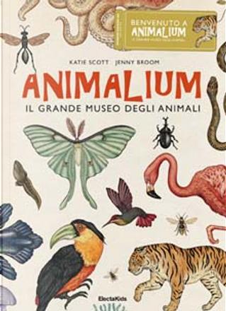 Animalium by Katie Scott, Jenny Broom