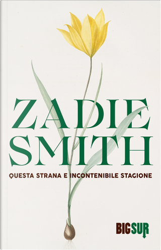 Questa strana e incontenibile stagione by Zadie Smith