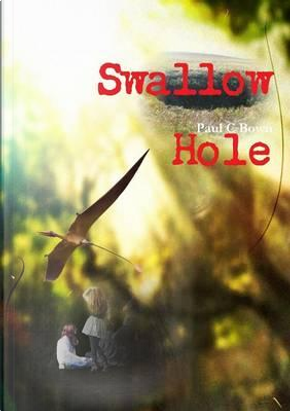 Swallow Hole by Paul C Bown