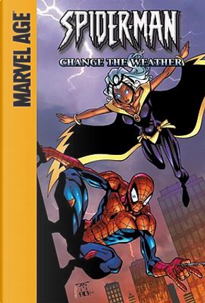 Spider-Man and Storm by Todd DeZago
