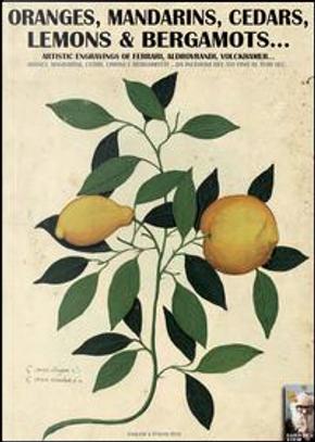 Oranges, mandarins, cedars, lemons & bergamots... Artistic engravings of Ferrari, Aldovrandi, Volckhamer... by Luca S. Cristini