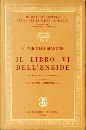 Il libro VI dell'Eneide by Publius Vergilius Maro