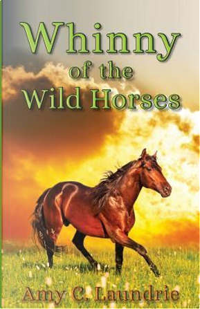 Whinny of the Wild Horses by Amy C. Laundrie
