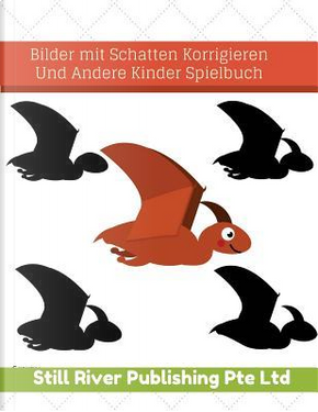 Bilder Mit Schatten Korrigieren Und Andere Kinder Spielbuch by Still River Publishing Pte Ltd