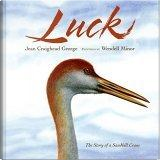 Luck by Jean Craighead George