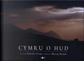 Cyfres Celf Cymru 2000 by Gwynfor Evans
