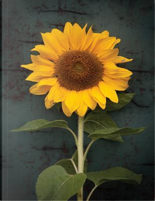 Sunflower Notebook by Dotted Notebook