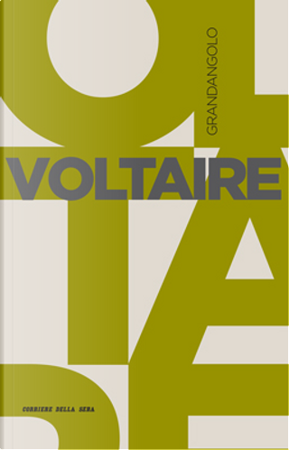 Voltaire by Gianni Paganini
