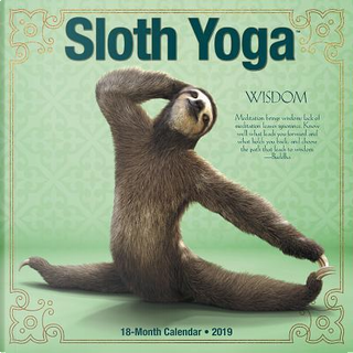 Sloth Yoga 2019 Calendar by Willow Creek Press