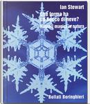 Che forma ha un fiocco di neve? by Ian Stewart