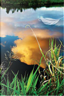 A Cloud's Reflection Notebook by N. D. Author Services