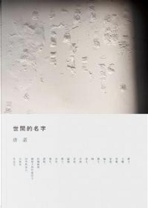 世間的名字 by 唐諾