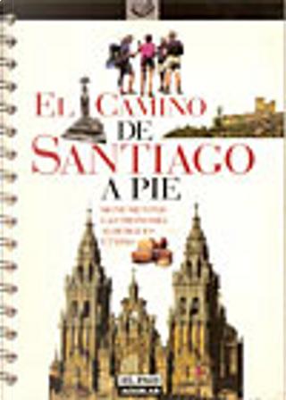 El Camino de Santiago a pie by Paco Nadal