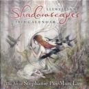 Llewellyn's 2018 Shadowscapes Calendar by Llewellyn