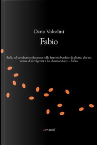 Fabio by Dario Voltolini