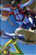 Sky Diving Any Day Planner Notebook by N. D. Author Services