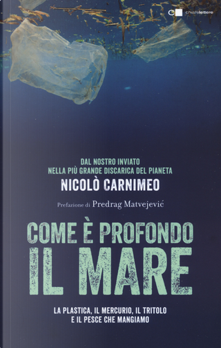 Come è profondo il mare. La plastica, il mercurio, il tritolo e il pesce che mangiamo by Nicolò Carnimeo