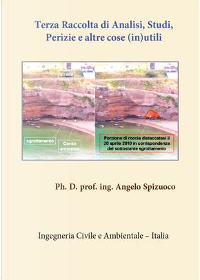Terza raccolta di analisi, studi, perizie e altre cose (in)utili by Angelo Spizuoco