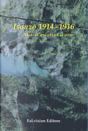 Isonzo 1914-1916 by Maria Concetta Cataldo