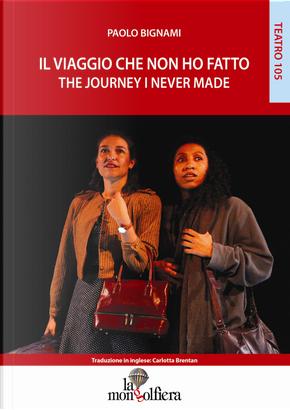 Il viaggio che non ho fatto-The journey I never made by Paolo Bignami