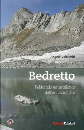 Bedretto. L'eldorado naturalistico dell'escursionista by Angelo Valsecchi