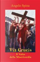 Via Crucis. Il volto della misericordia by Angelo Spina