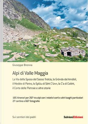 Alpi di valle Maggia by Giuseppe Brenna