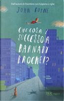 Che cosa è successo a Barnaby Brocket? by John Boyne