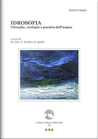 Idrosofia. Filosofia, teologia e poetica dell'acqua by Antimo Negri