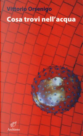 Cosa trovi nell'acqua by Vittorio Orsenigo