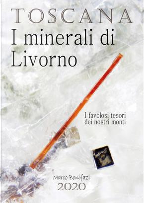 Toscana. I minerali di Livorno. I favolosi tesori dei nostri monti by Marco Bonifazi