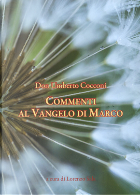 Commenti al Vangelo di Marco by Umberto Cocconi