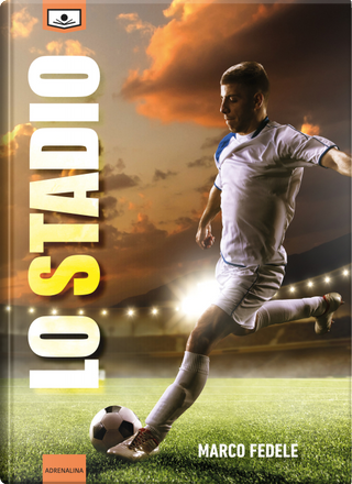 Lo stadio by Marco Fedele