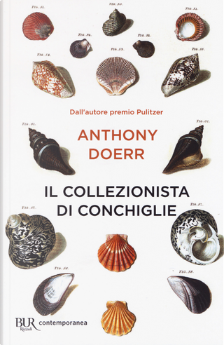Il collezionista di conchiglie by Anthony Doerr