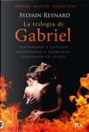 La trilogia di Gabriel: Tentazione e castigo-Redenzione e tormento-Seduzione ed estasi by Sylvain Reynard