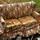 un_divano