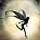 ShadowShine (scambio solo ebook)