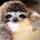 bradipo mannaro